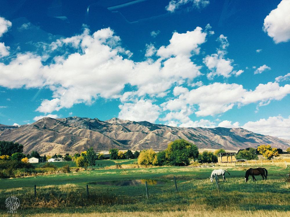 A_Utah_L11.jpg