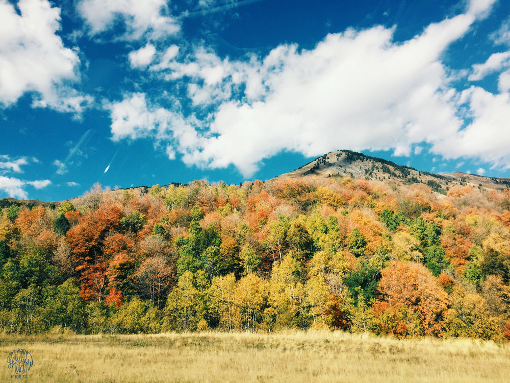 A_Utah_L14.jpg
