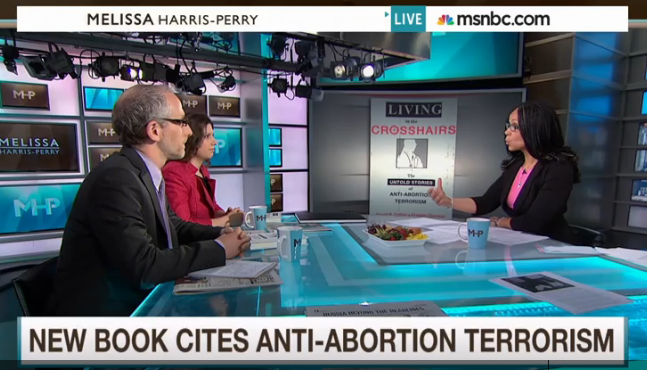 MSNBC The Melissa Harris-Perry Show (May 9, 2015) - click to play