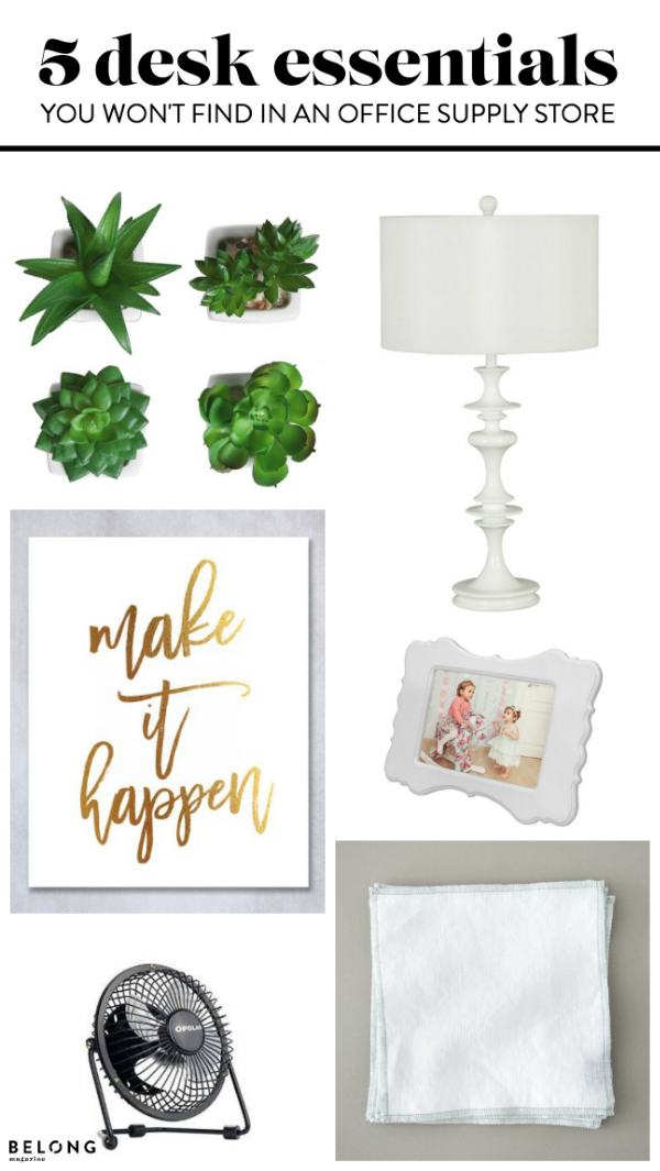"fan  /  frame  /  print  /  ""coaster""  /  succulents  /  lamp"