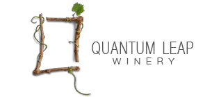 quantumleaplogo.png