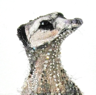Beaded Meerkat (Detail)  |  Photography Susan Horth
