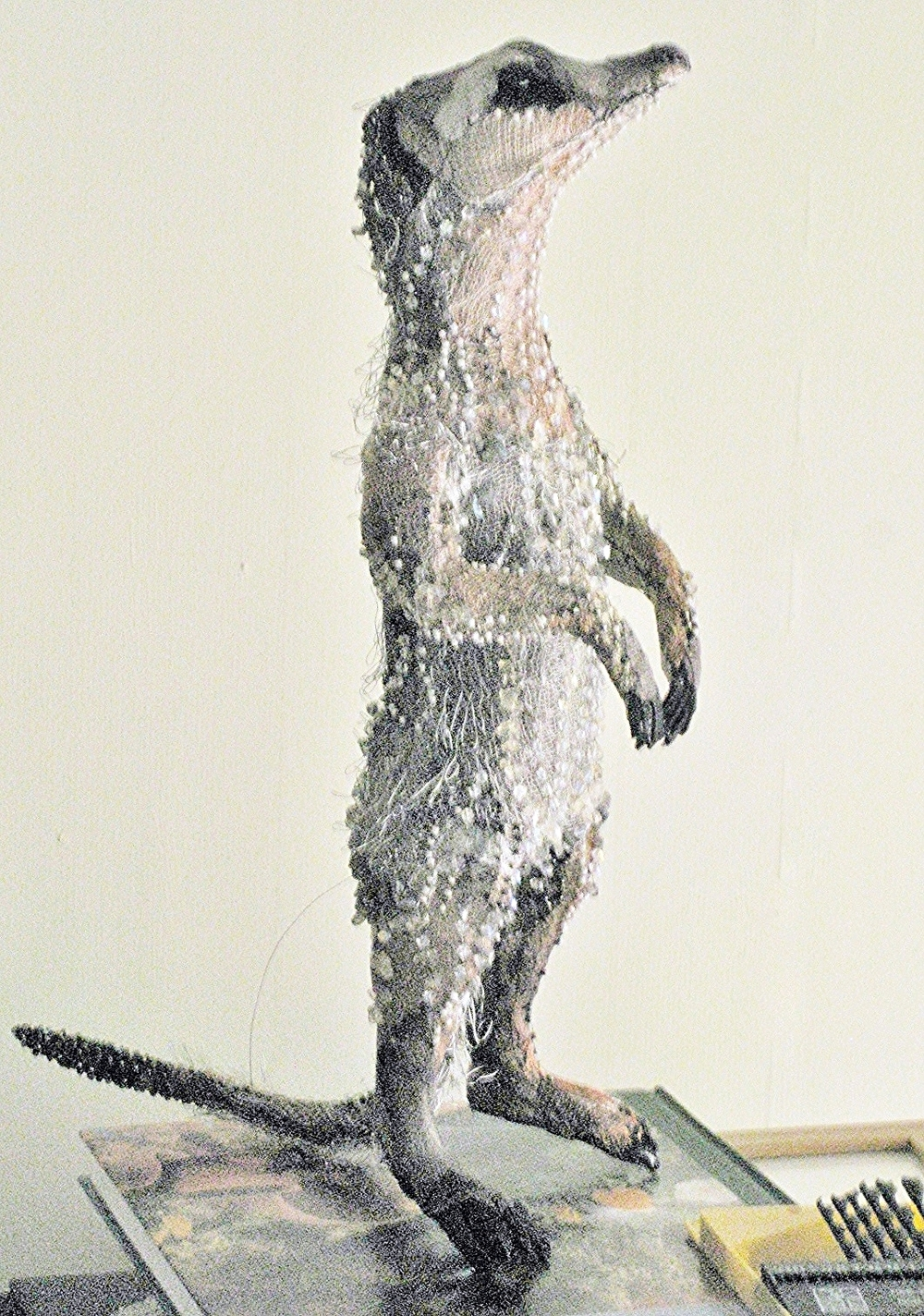 Beaded Meerkat  |  Photography by Susan Horth