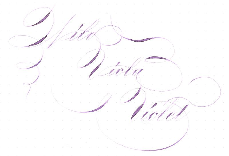 Ziller Wild Viola Violet.jpg