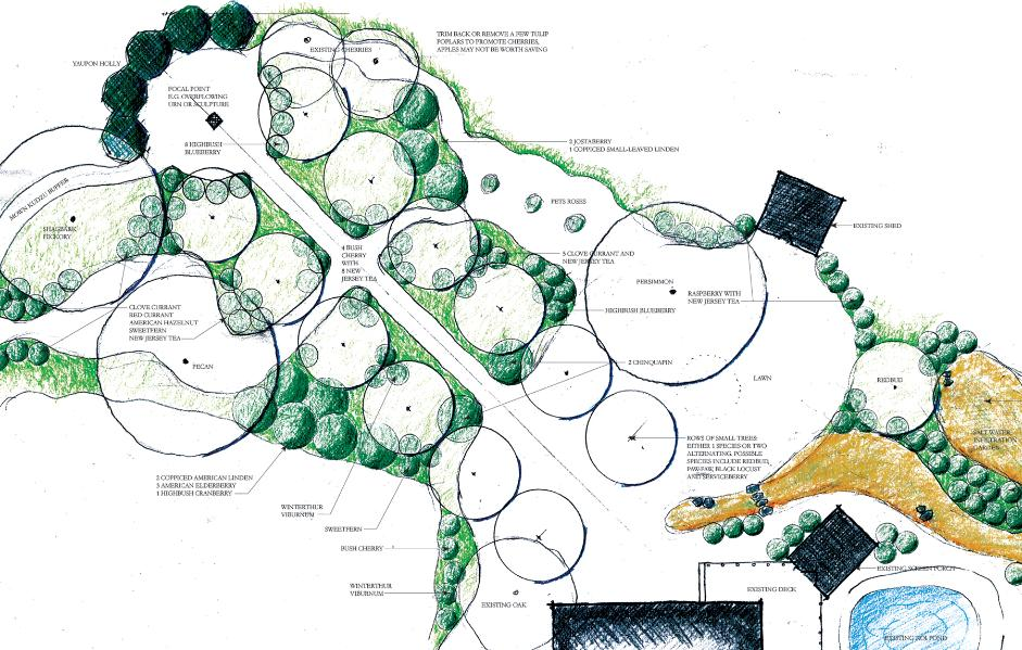 Design forested for Forest garden design zone 4