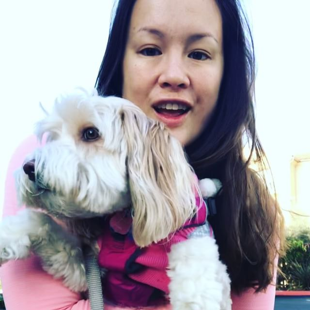 Get out there and get moving today! I woke up really sleepy this morning and the last thing I wanted to do was go workout so I decided to do a little 20 minute mindfulness walk with Penny :-) Even if you're feeling tired try to get out there and do one thing differently today :-)