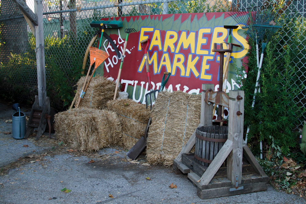 Red Hook Community Farm_Sherridon Poyer-0862.jpg