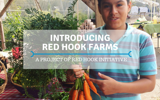Red Hook Farms intro (1).png