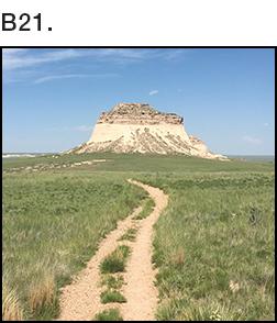 B021.jpg