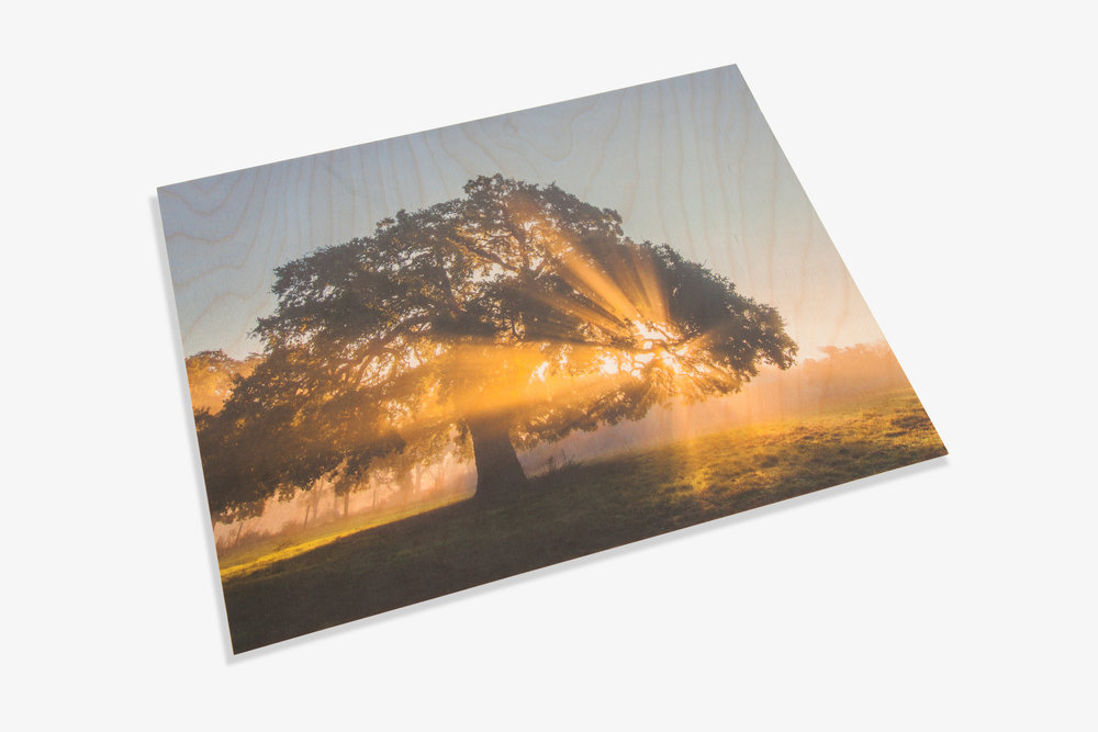Direct to Wood Standout Photo Print
