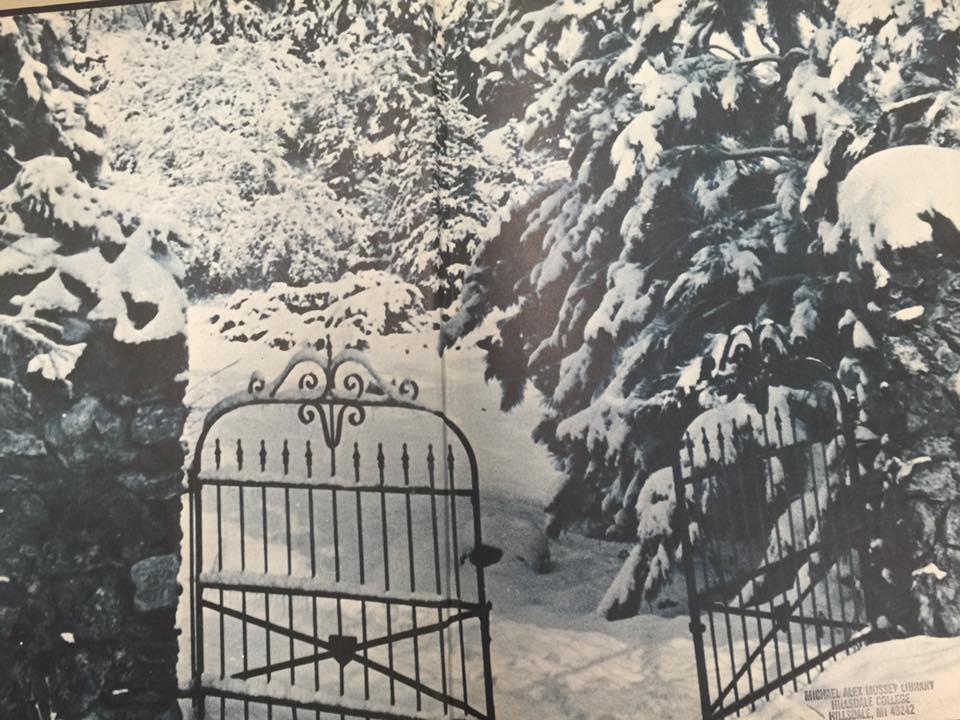 Snowy Hillsdale College Arboretum