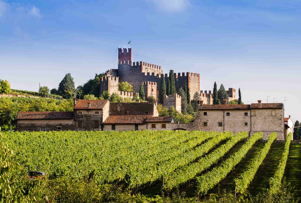 Soave Italy Bike Tour.jpg