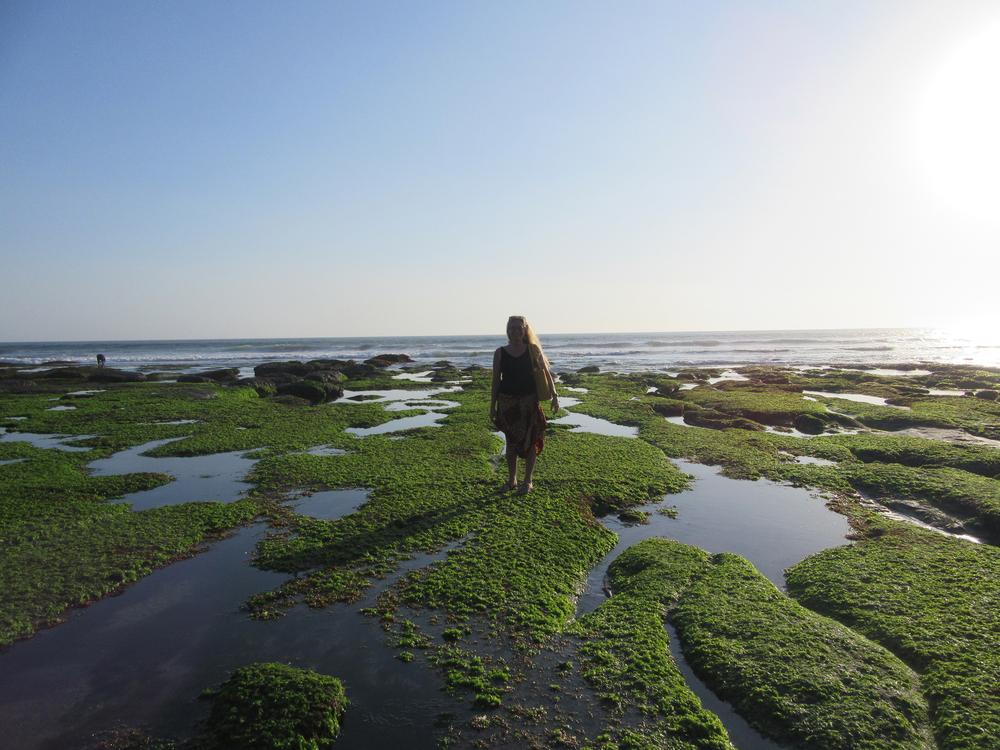 m_Bali_tidal pools Tanah Lot.jpg