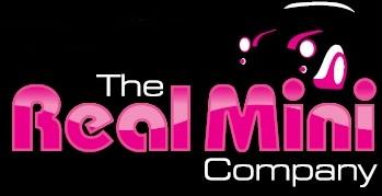 the real mini company logo