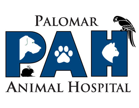 BBN North County San Diego - Palomar Animal Hospital