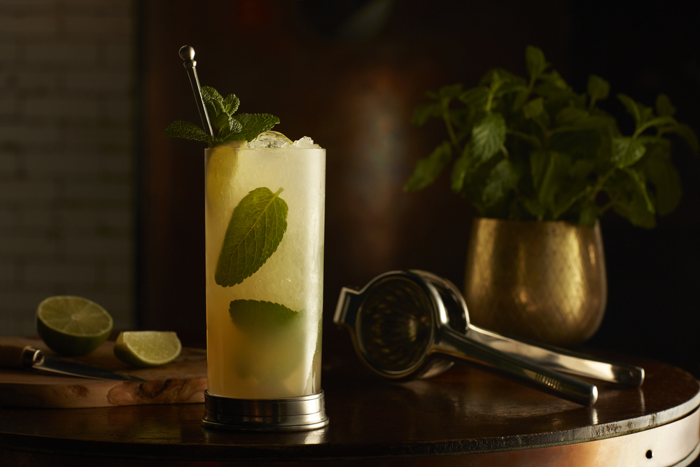 The Mayfair Mojito