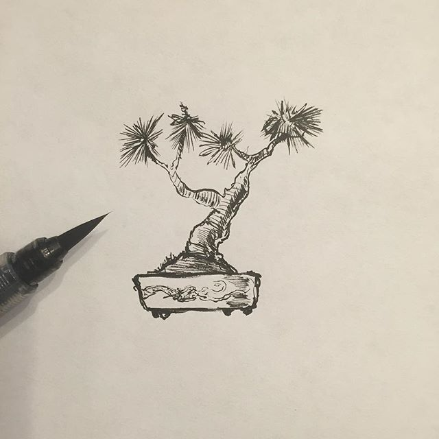 Bonsai are small, right? #brushpen #illustration #drawing