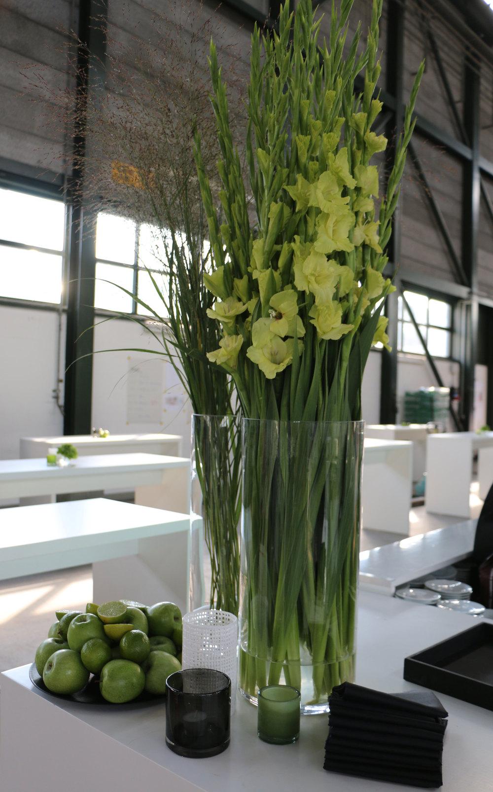 gladiolen-gruen.jpg