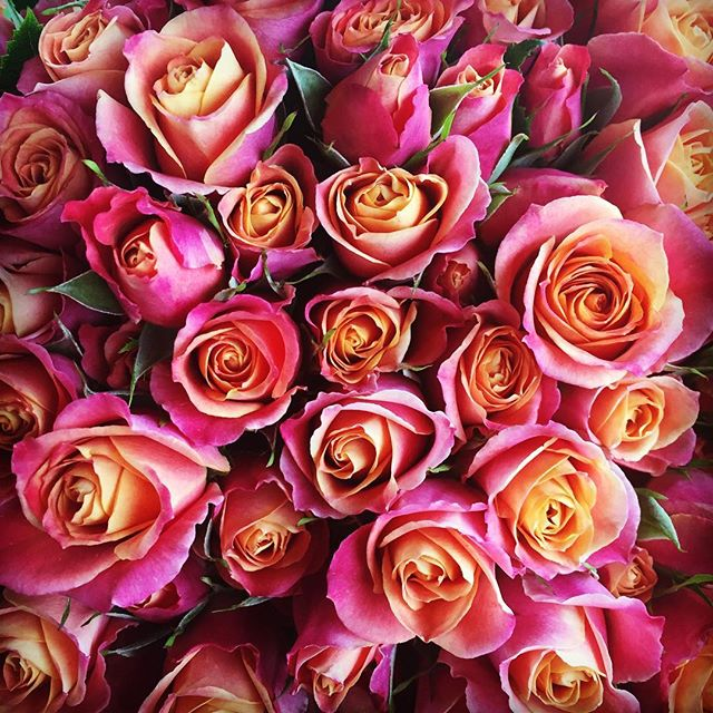 Gorgeous Flowers...Beautiful Sunday 😍Who else loves roses ?