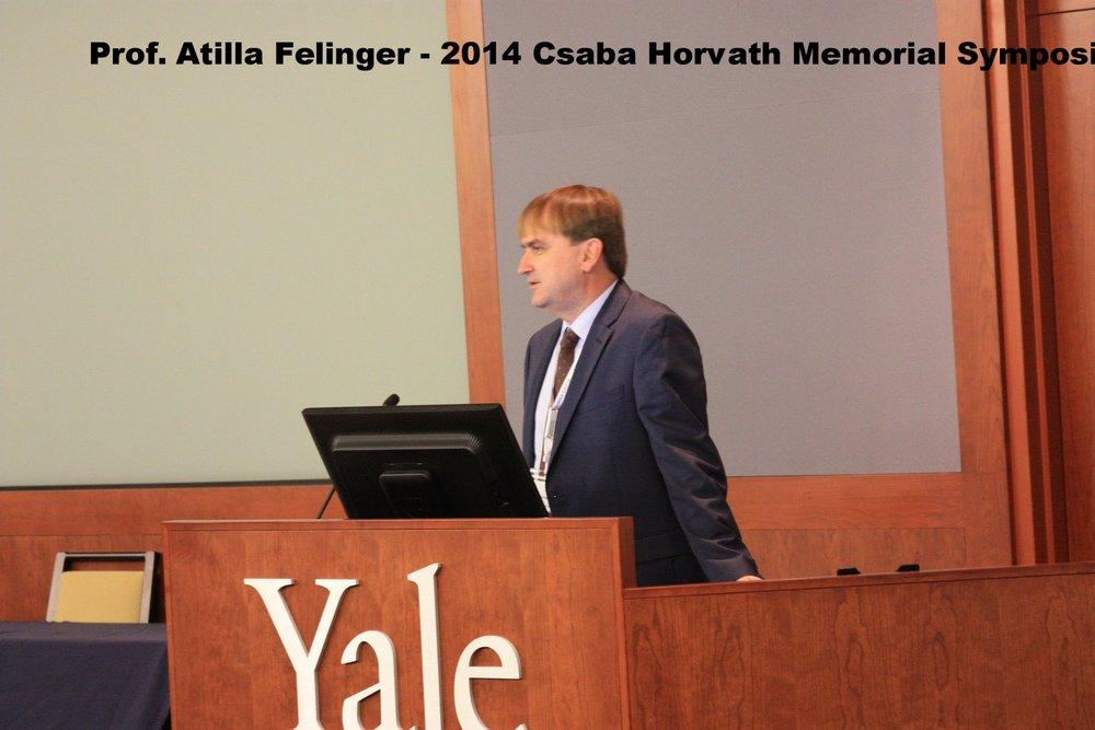 2014 Csaba Horvath Memorial Symposium
