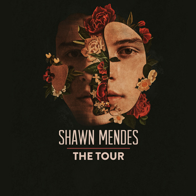 SHAWN MENDES      GET VIP ACCESS