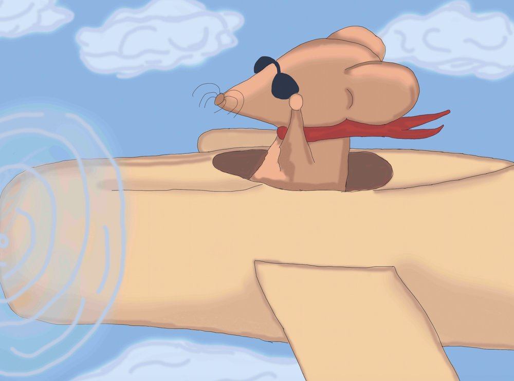 mouse in plane xox.jpeg