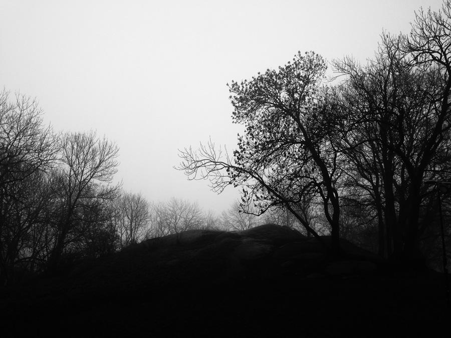 © FINGERPRINTS by DELAFOI