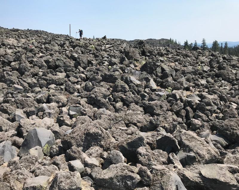 lava-field-mt-st-helens-hike-CG-Grisez_1244.jpg