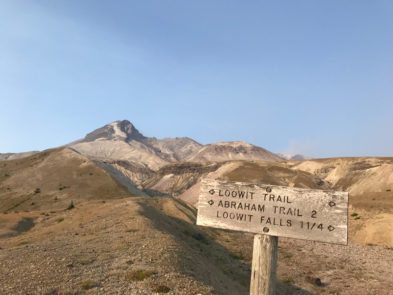 The Loowit Trail around Mt St Helens covered many kinds of terrain - a lot of sparse rolling or jagged landscape, but also rivers, a tiny oasis, lava fields, steep gullies, and a little lush forest.