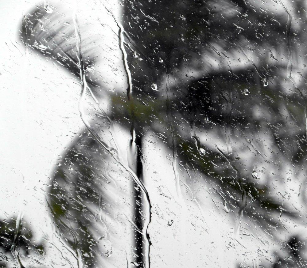 hurricanes-101.jpg