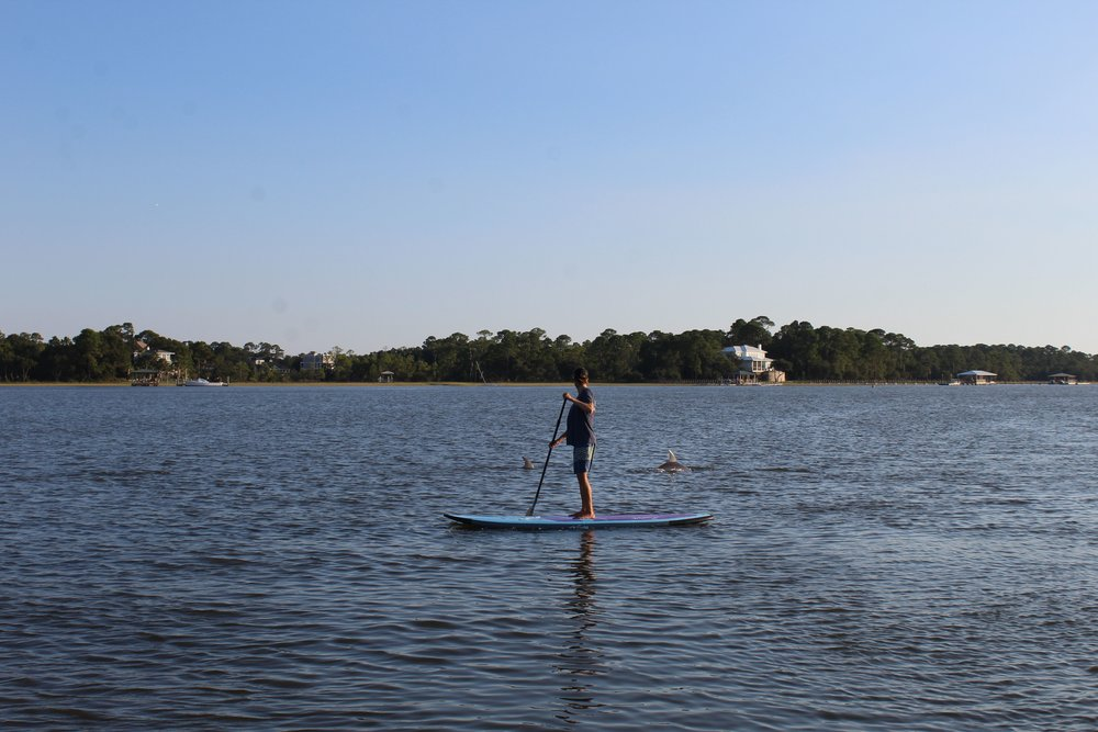 What-To-Bring-Paddle-Boarding.jpg