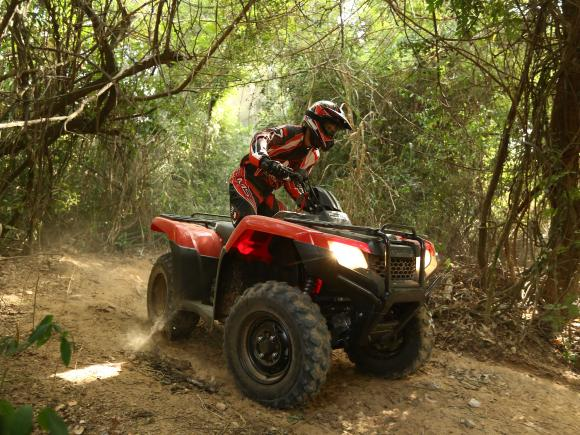 GET HONDA TRX420 THIS SUMMER