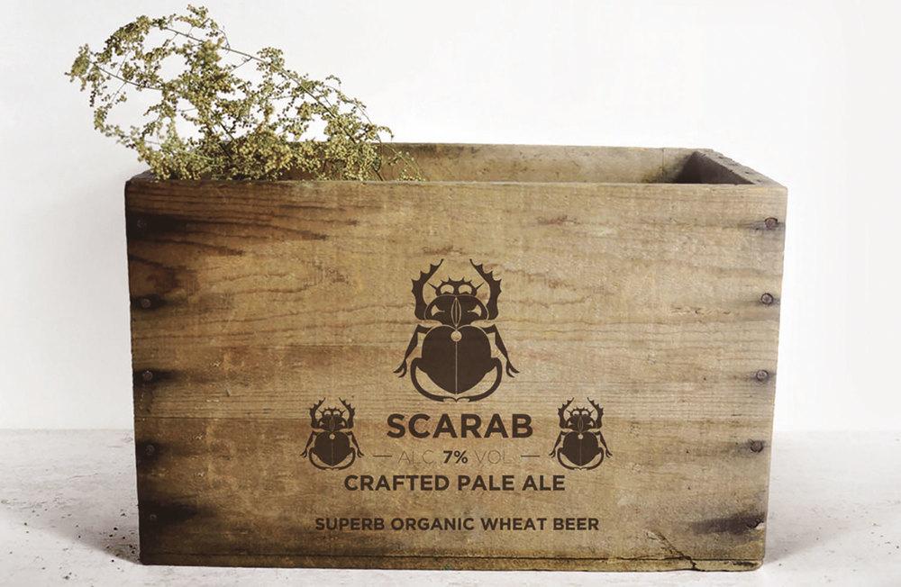 beer-box.jpg
