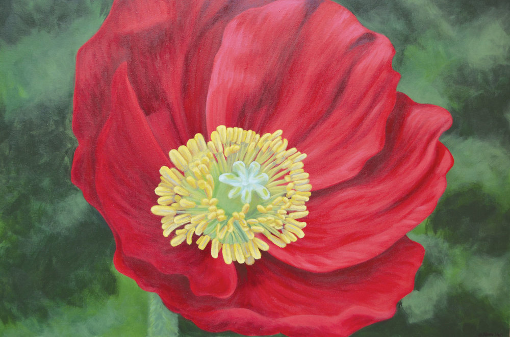 Poppy: Acrylic on Canvas