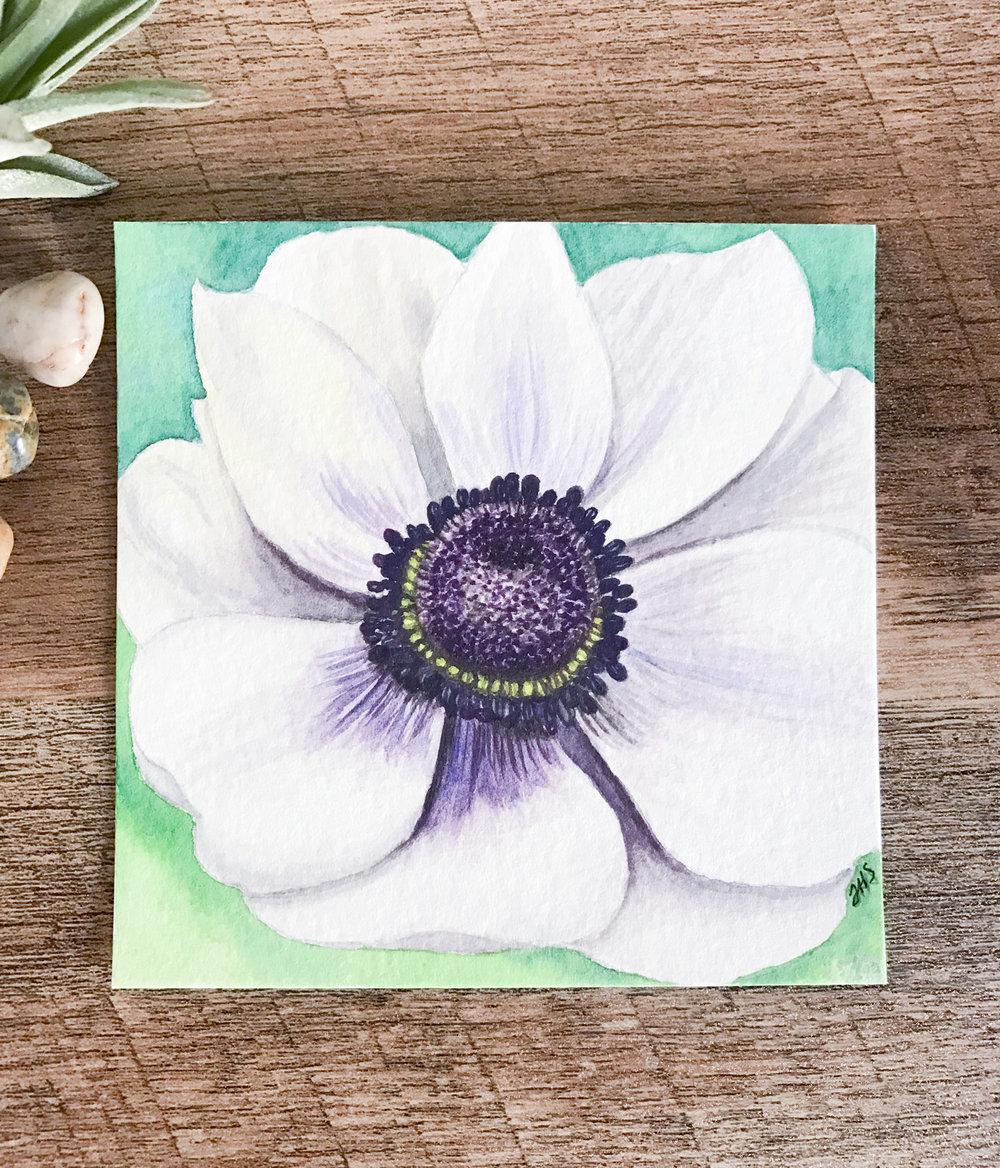 25-anemone-1.jpg