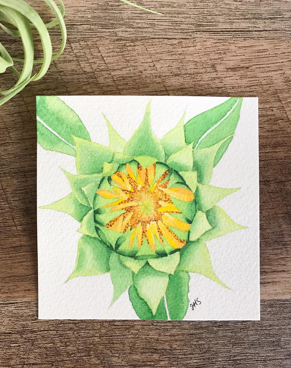 91-Sunflower-1.jpg