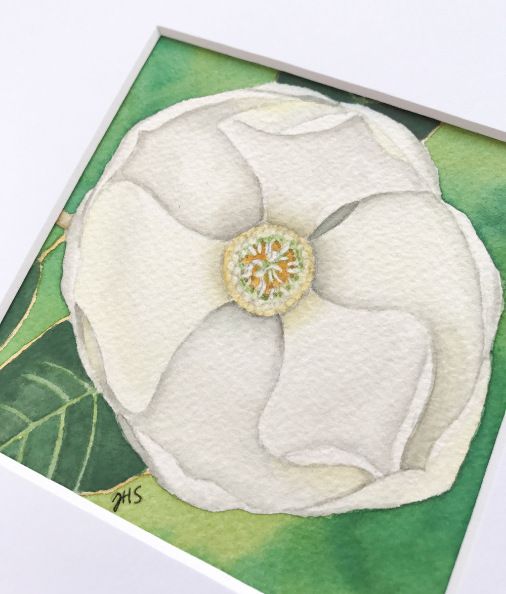 92-magnolia-3.jpg