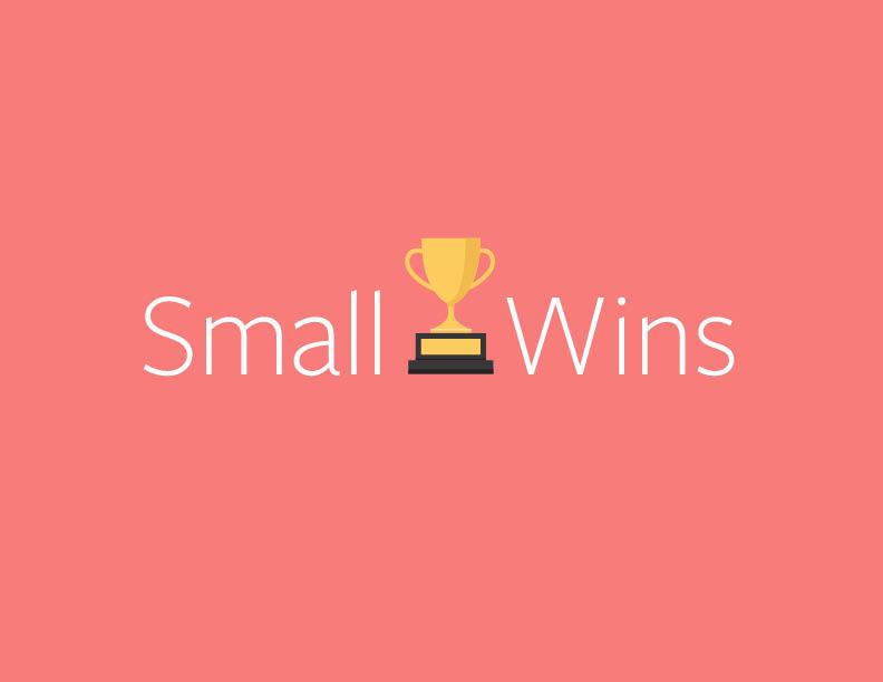 smallwins.jpg