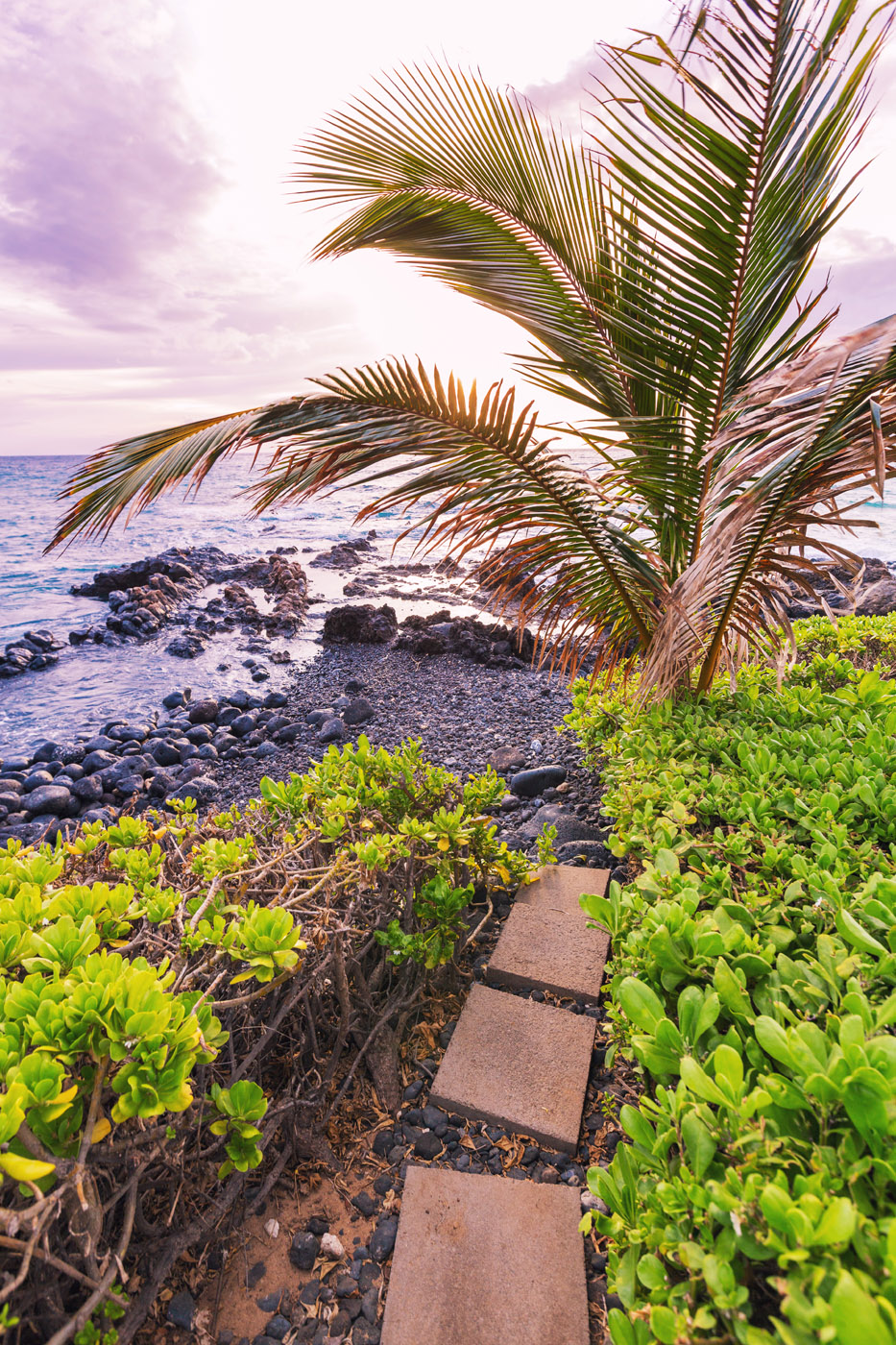 maui-oceanfront-luxury-property-rentalTTBH Beach Path.jpg