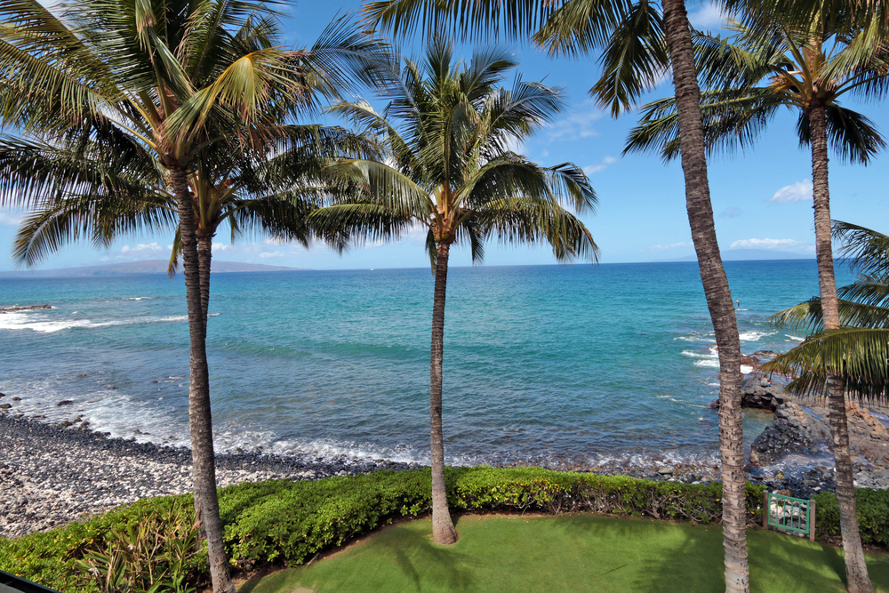 maui-oceanfront-luxury-property-rental-Bliss Lawn Upper.JPG
