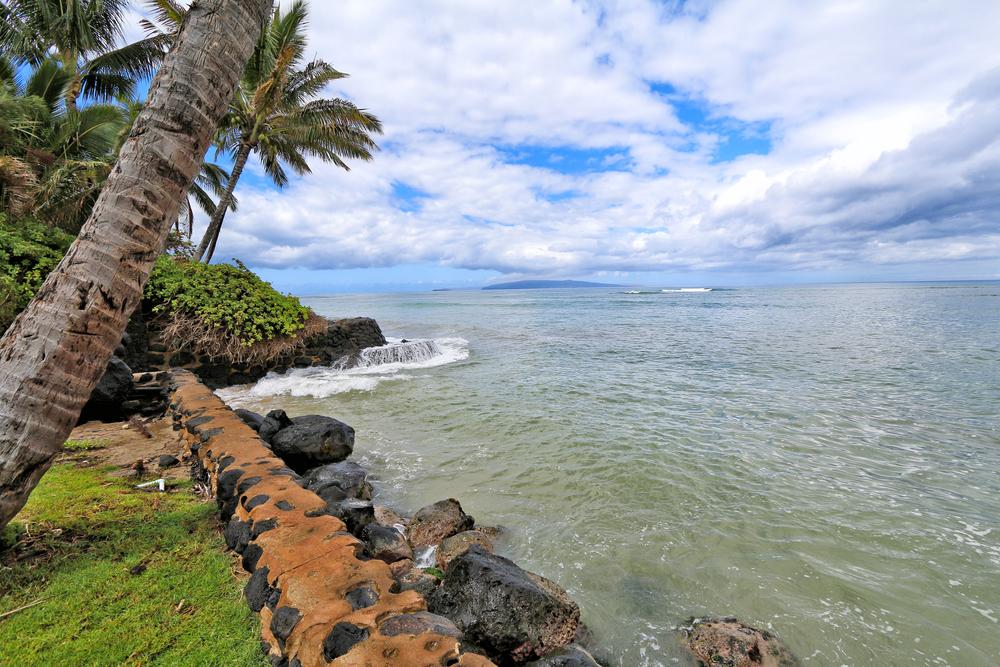 oceanfront-property-rental-kihei-IMG_4668.jpg