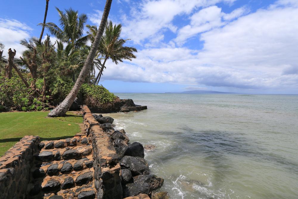 oceanfront-property-rental-kihei-IMG_4953.jpg