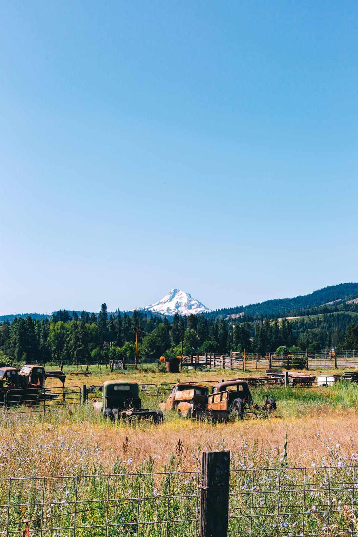 Mt Hood Tractor (1 of 1).jpg