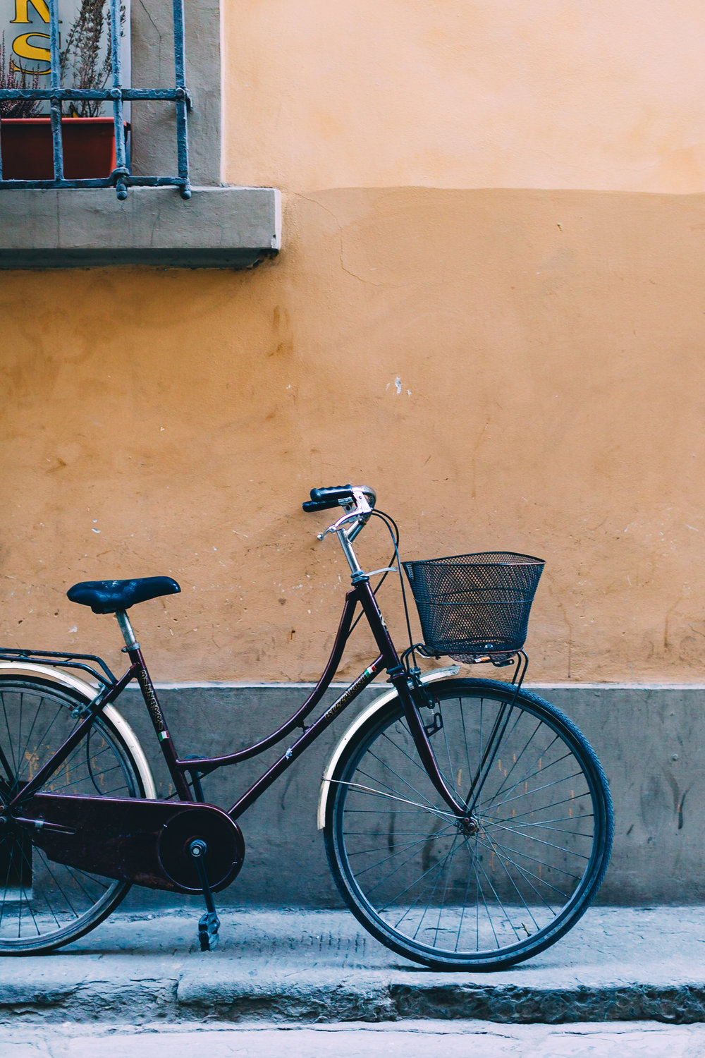 Brown Bicycle (1 of 1).jpg