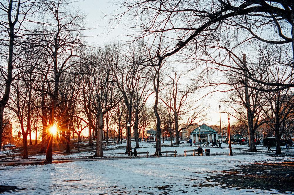 Leica Boston Commons.jpg