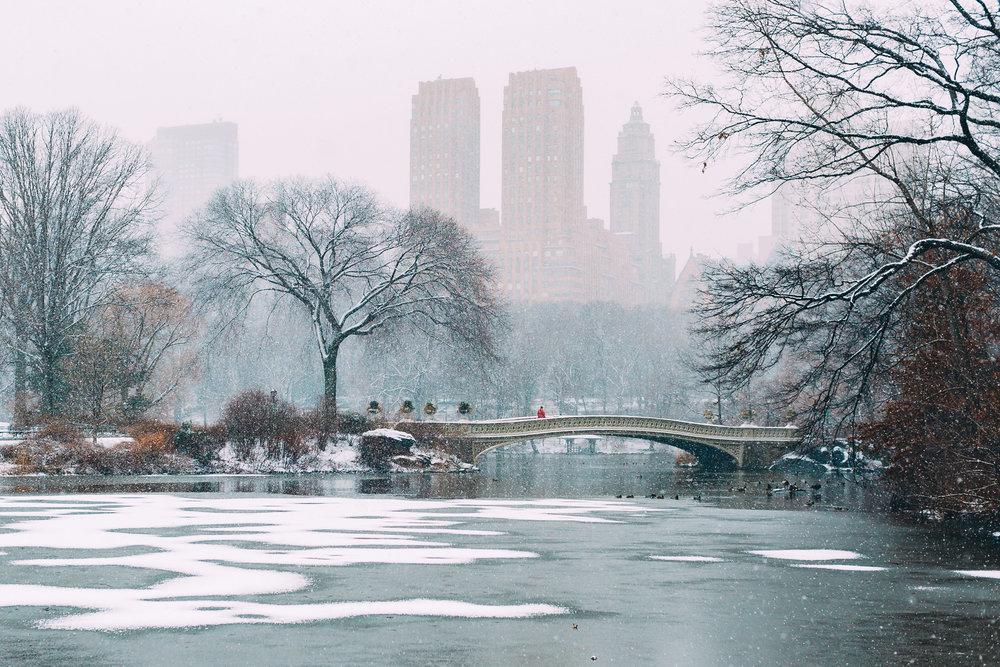 Central Park Man on Bridge.jpg