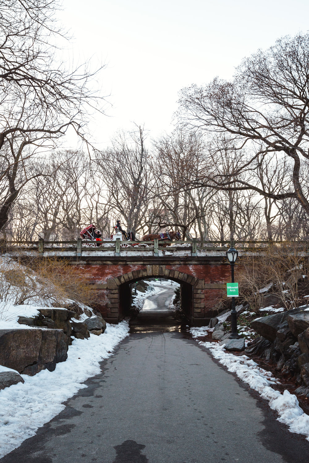 Central Park Horse Archway.jpg