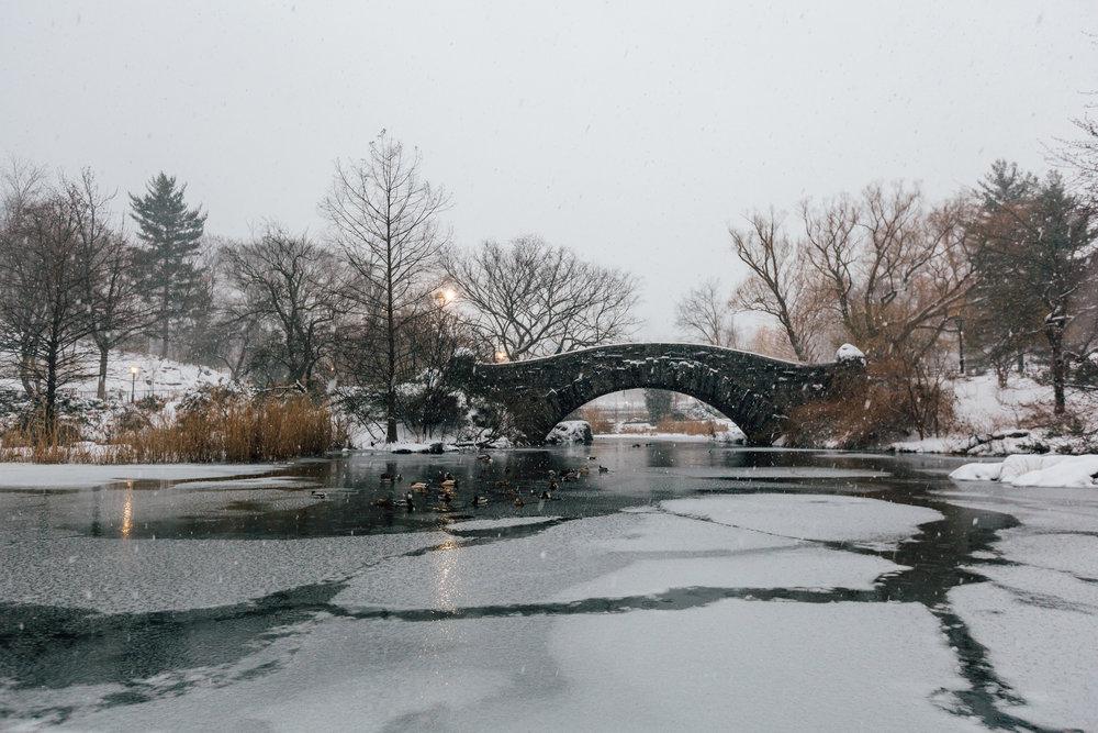 Gapstow Bridge Snow.jpg