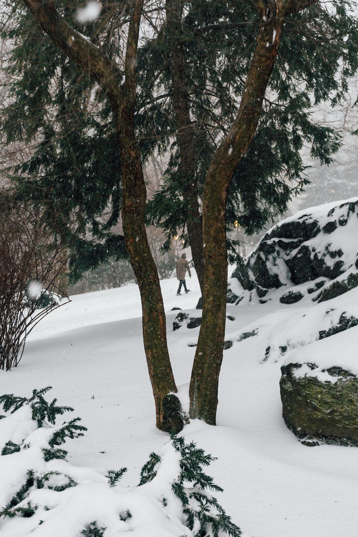 Central Park Olive Coat Man_.jpg