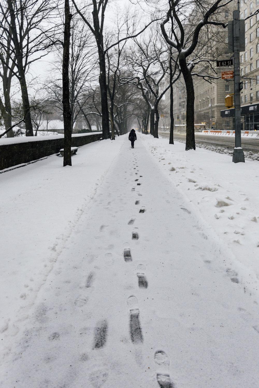 Mom Walking Central Park.jpg
